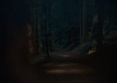 blackforest1_sml2
